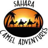 Sahara Camel Adventures